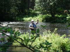 Fishing the Metolius River, Oregon
