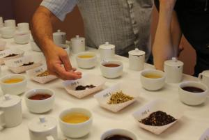 Judging underway in 2014 Spring Harvest Hot Tea Categories