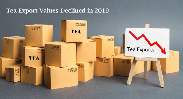 Need to Know | Export Values Declined in2019